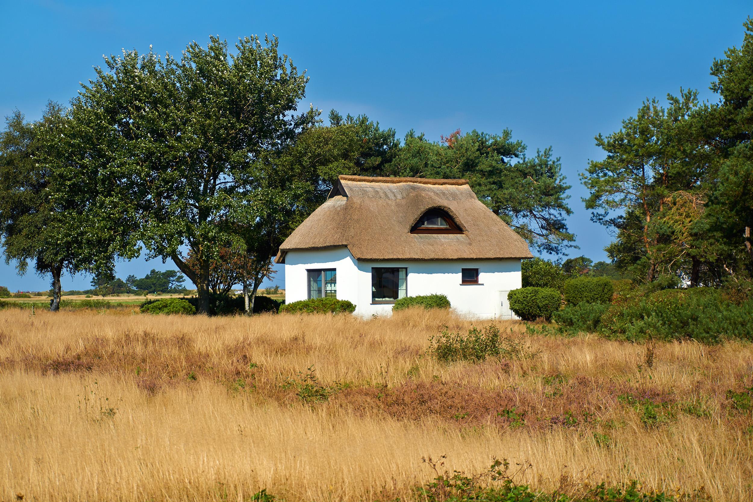 Heide Hiddensee